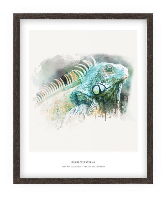 Iguana - Fine art print - Casa Art collection