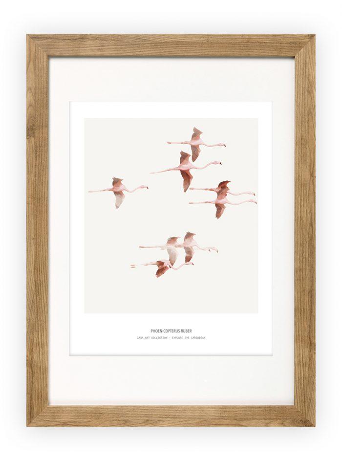 Vliegende Flamingos- Fine Art Printing - Explore the Caribbean